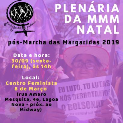 Plenária MMM (1)